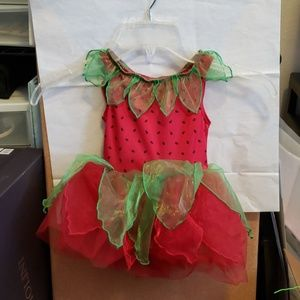 Gymboree fairy costume